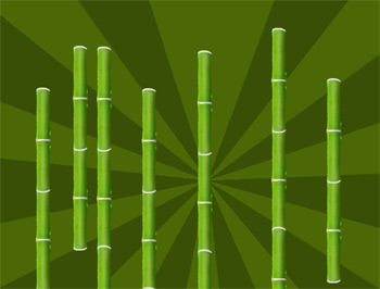 bamboo2 Create Custom Brush Patterns in Photoshop