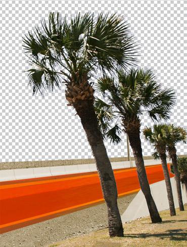 palmtrees Create Retro Graphics in Photoshop